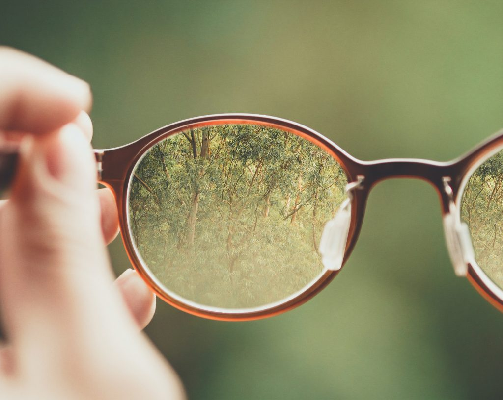 Forest in focus through eye glasses representing the clarity paradox.